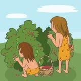 Prähistorische Menschen, die Beeren auswählen Lizenzfreie Stockfotografie