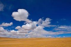 Prärie för moln för Kina Tibet snöstorm Arkivfoton