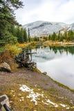 Prärievarg naturligt område för sjö, prärievarg sjöar, Alberta, Kanada Arkivbild