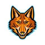 Prärievarghuvud Front Mascot Royaltyfri Fotografi