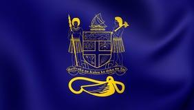 Präsident von Fidschi-Standard Lizenzfreies Stockbild