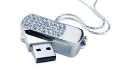 Pråligt drev för USB royaltyfri bild
