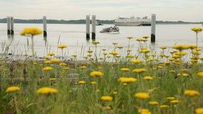 Pråm och blommor, Fraser River Royaltyfri Foto