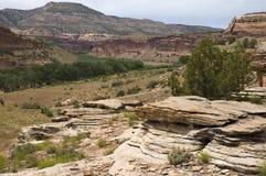 Près de Fruita, le Colorado Photos libres de droits