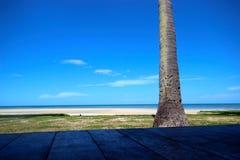 Près de la plage Photos libres de droits