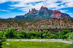 Près de Zion National Park, l'Utah photos libres de droits