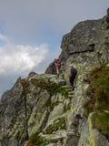 Près du bord dans le Tatra image stock