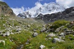 Pré alpin lumineux sur un fond des pentes Photographie stock libre de droits