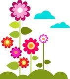 Pré avec des fleurs et des nuages Photos stock