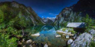 Pré avec des vaches en parc national de Berchtesgaden photos libres de droits
