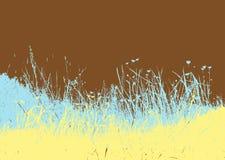 Pré avec l'herbe colorée. Photographie stock