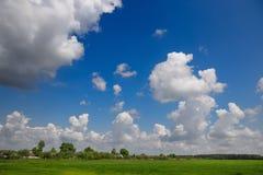 Pré avec l'herbe verte et le ciel bleu avec des nuages Image stock