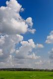 Pré avec l'herbe verte et le ciel bleu avec des nuages Images libres de droits