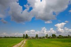 Pré avec l'herbe verte et le ciel bleu avec des nuages Photo libre de droits