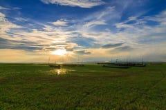Pré avec la lumière du soleil Photo libre de droits