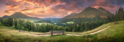 Pré avec la route en parc national de Berchtesgaden photographie stock libre de droits