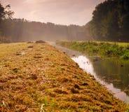 Pré avec le canal et les arbres Images libres de droits