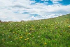Pré d'Alpes avec le ciel nuageux Photo stock
