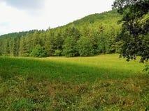 Pré dans l'ombre séparée par montagnes Photographie stock libre de droits