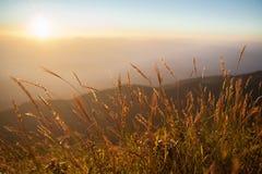Pré dans les couchers du soleil sur la montagne Photographie stock libre de droits