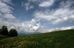 Pré dans les montains Photo libre de droits