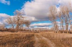 Pré de chemin au printemps La nature pittoresque de l'Angleterre pendant le premier ressort Images libres de droits