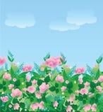 Pré de fleur Photographie stock libre de droits