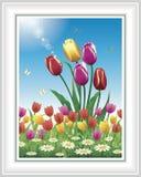 Pré de fleur sur le fond de ciel bleu Photos libres de droits