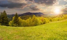 Pré de Hillside près de forêt en montagne au coucher du soleil Photo stock
