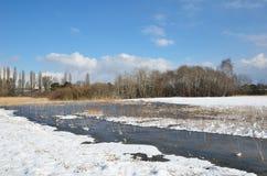 Pré de l'eau sous la neige légère photographie stock libre de droits