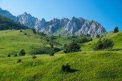 Pré de montagne Images libres de droits