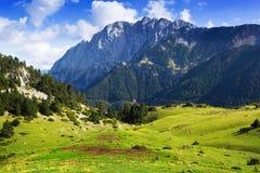 Pré de montagne contre le bâti de roche Photo libre de droits