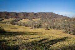 Pré de montagne dans le comté de Bath, la Virginie, Etats-Unis Photographie stock