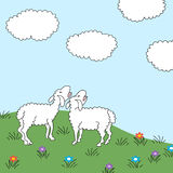 Pré de moutons Photographie stock libre de droits