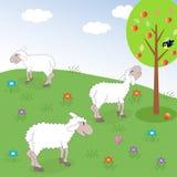 Pré de moutons Images stock
