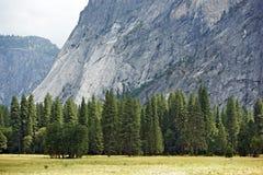 Pré de vallée de Yosemite Photographie stock libre de droits