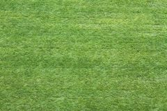 Pré de vert d'herbe vu de ci-dessus pour employer comme papier peint ou dos Photographie stock libre de droits