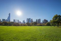 Pré du ` s de moutons au Central Park un jour clair d'été Photos libres de droits
