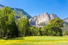 Pré et arbres entourés par les montagnes rocheuses Image libre de droits