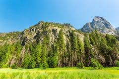 Pré et arbres entourés par les montagnes rocheuses Images libres de droits