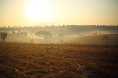 Pré et brouillard Photographie stock libre de droits