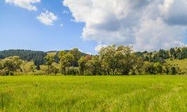 Pré et ciel nuageux Photographie stock libre de droits