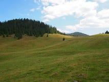 Pré et collines de montagne Photo libre de droits