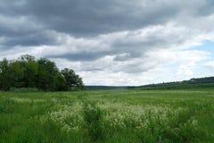 Pré et les nuages de pluie dramatiques foncés Photographie stock