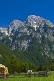 Pré et montagne alpestres Photos stock