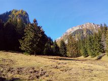 Pré et montagnes Image libre de droits