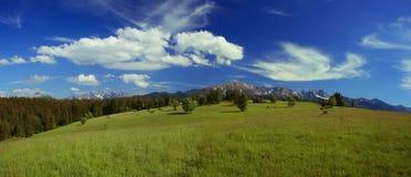 Pré et montagnes Photo stock