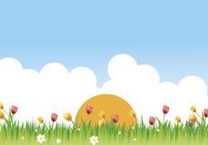 Pré fleuri Photos libres de droits