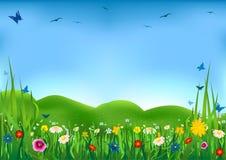 Pré fleurissant Image stock