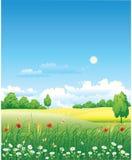 pré floral Images stock